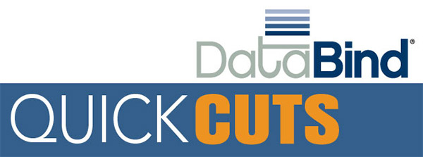 DataBind QuickCuts Logo
